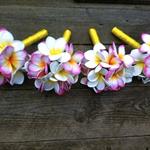 Frangipani Bridesmaids Bouquet package